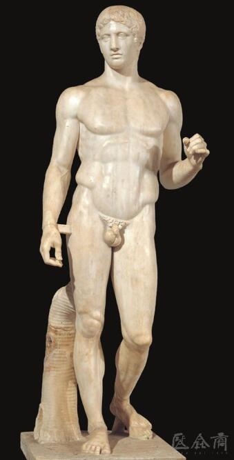 公元前450年左右,希腊黄金时代的雕塑家波留克列特斯创作的站立裸体男子.jpg